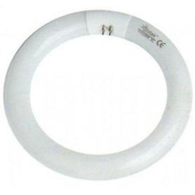 Tubo fluorescente circular T9 22W G10Q GSC Evolution