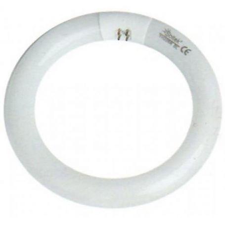Tubo fluorescente circular T9 32W G10Q GSC Evolution