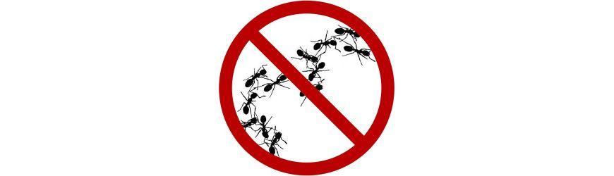 Tienda online de Eliminar hormigas