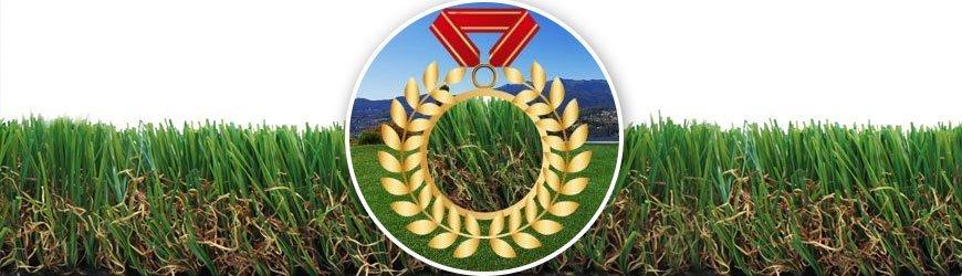 Lugano Höchste Qualität Rasen online