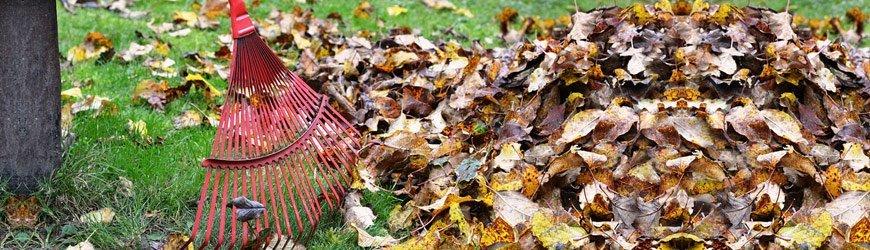 Brooms Garten online