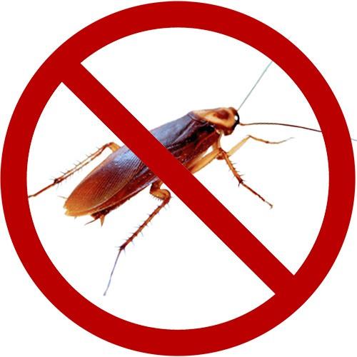 Tienda online de Eliminar Cucarachas