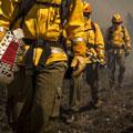guantes para bombero precios