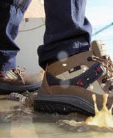 comprar zapato gama nonmetal