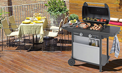 camping gas barbecue Price