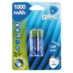 ricaricabili R03 batteria / Aaani-MH 1000mAh 2 unità GSC Evolution