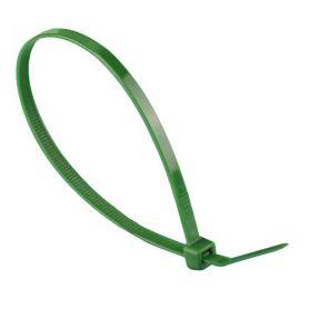 100x2.5 flangia di nylon verde (sacchetto 100 pezzi) DAMESA