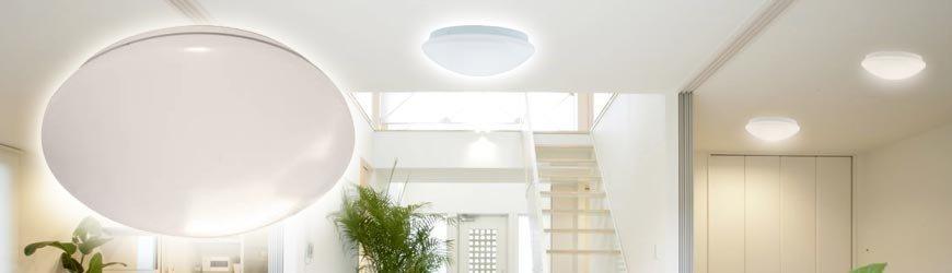 Plafond En Wandlampen online