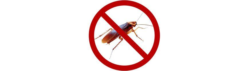 Verwijderen Kakkerlakken online
