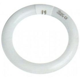 T9 circular tubo fluorescente 32W G10q GSC Evolução