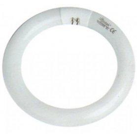 CIRCULAR tubo fluorescente de 40W T9 G10q GSC EVOLUTION