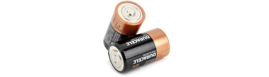 D Batteries (LR20) online shop