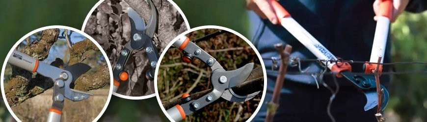 Two-hand Pruning Shears online shop